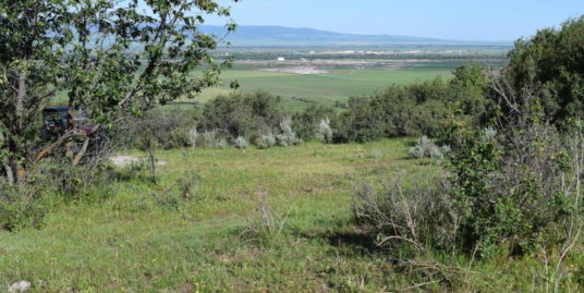 05-000600 SOUTH STATE LINE ROAD, Alta, WY 83414