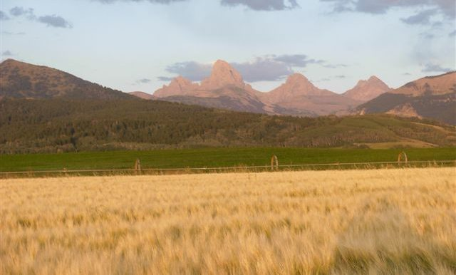 Mtn Legends Ranch Pictures 009