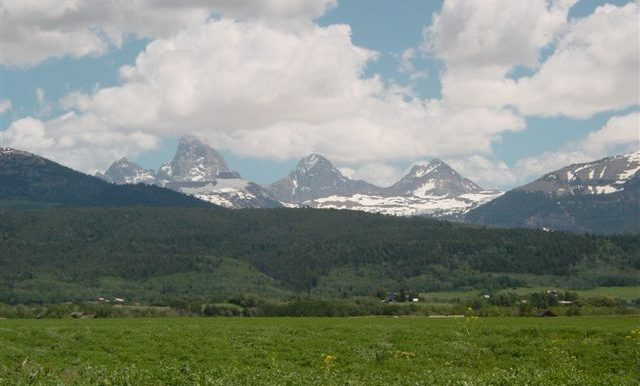 Snowcrest Rch. Summer 06 005