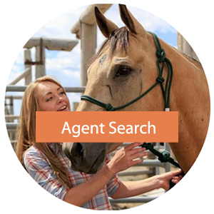 agent search